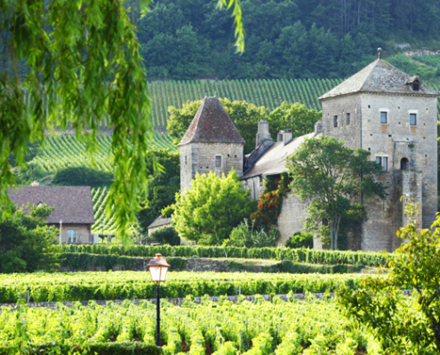 traditional-winery-visit-central-france