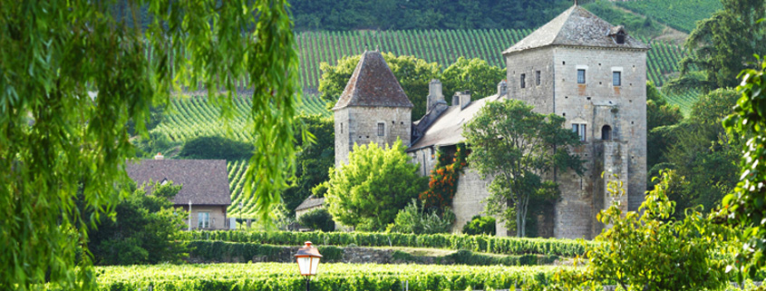 Wine tour in middle france