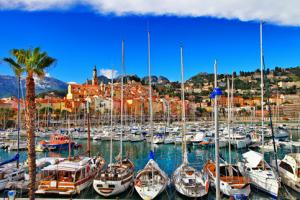 12 Marseilles