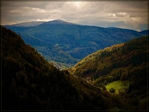 Black Forest - Fall Schwarzwald