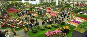 Ghent Flower Show